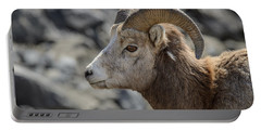 Close Big Horn Sheep  Portable Battery Charger