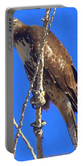 Hawk Close Up  Portable Battery Charger