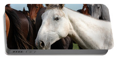 Close-up Herd Of Horses. Portable Battery Charger