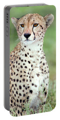 Close-up Of A Female Cheetah Acinonyx Portable Battery Charger