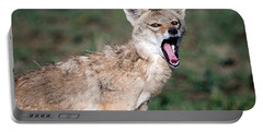 Close-up Of A Golden Jackal Canis Portable Battery Charger