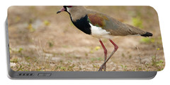 Close-up Of A Southern Lapwing Vanellus Portable Battery Charger