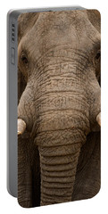 Close-up Of An African Elephant Portable Battery Charger