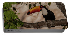 Close-up Of Tocu Toucan Ramphastos Toco Portable Battery Charger by Panoramic Images