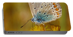 Closeup Of A Common Blue Butterfly Portable Battery Charger