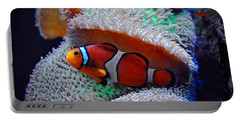 Portable Battery Charger featuring the photograph Clown Fish by Savannah Gibbs
