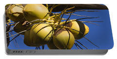 Portable Battery Charger featuring the photograph Coconut 1 by Teresa Zieba