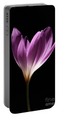 Colchicum #3 Portable Battery Charger