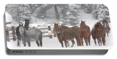 Cold Ponnies Portable Battery Charger by Diane Bohna