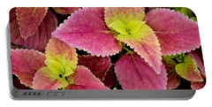 Coleus Colorfulius Portable Battery Charger