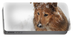Collie In The Snow Portable Battery Charger by Jeannette Hunt