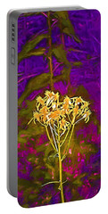 Portable Battery Charger featuring the photograph Color 5 by Pamela Cooper