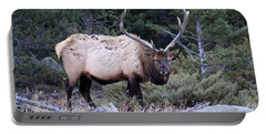 Colorado Bull Elk Portable Battery Charger
