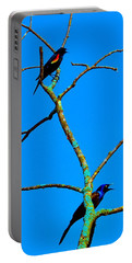 Portable Battery Charger featuring the photograph Colorful Duet by Zafer Gurel