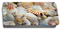 Colorful Ocean Seashells 2 Portable Battery Charger by Andee Design