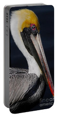 Colors Of A Pelican Portable Battery Charger
