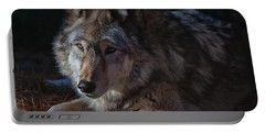 Colors Of A Wolf Portable Battery Charger