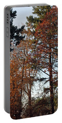 Portable Battery Charger featuring the photograph Colors Of Autumn by Tikvah's Hope