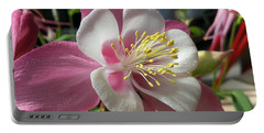 Portable Battery Charger featuring the photograph Columbine by Caryl J Bohn