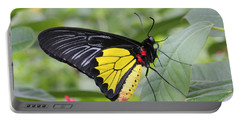 Portable Battery Charger featuring the photograph Common Birdwing Butterfly by Judy Whitton