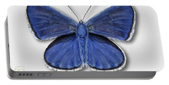 Common Blue Butterfly - Polyommatus Icarus Butterfly Naturalistic Painting - Nettersheim Eifel Portable Battery Charger