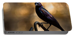Common Grackle Portable Battery Charger