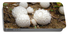 Common Puffball Dewdrop Harvest Portable Battery Charger