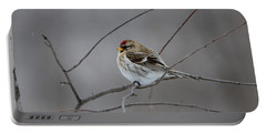Portable Battery Charger featuring the photograph Common Redpoll by David Porteus