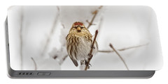 Common Redpoll Portable Battery Charger
