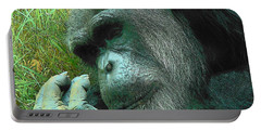 Portable Battery Charger featuring the photograph Contemplative Chimp by Rodney Lee Williams