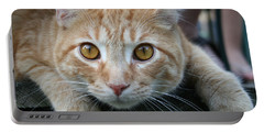 Cool Cat Named Calvin Portable Battery Charger