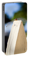 Cool Dude Dragonfly Portable Battery Charger