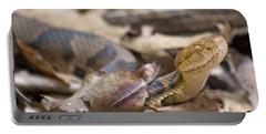 Copperhead In The Wild Portable Battery Charger by Betsy Knapp