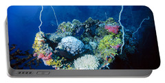Corals On Ship Wreck Portable Battery Charger