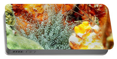 Portable Battery Charger featuring the photograph Corkscrew Anemone Grove by Amy McDaniel