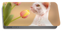 Cornish Rex Cat Portable Battery Charger by Verena Matthew