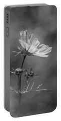 Portable Battery Charger featuring the photograph Cosmo Flower Reaching For The Sun by Debbie Green