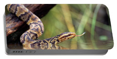 Cottonmouth Snake Agkistrodon Portable Battery Charger