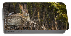 Portable Battery Charger featuring the photograph Cottontail Rabbit Ears Up  by David Millenheft