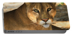 Cougar II Portable Battery Charger by Roger Becker