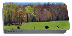 Portable Battery Charger featuring the photograph Countryside In Spring by Kathryn Meyer