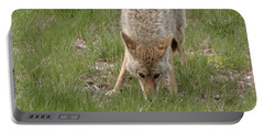 Coyote Eyes Portable Battery Charger