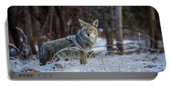 Coyote In The Meadow  Portable Battery Charger
