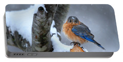 Portable Battery Charger featuring the photograph Cranky Can Be Cute by Nava Thompson