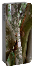 Portable Battery Charger featuring the photograph Crape Myrtle Branches by Peter Piatt