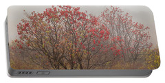 Crimson Fog Portable Battery Charger