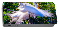 Criss-cross Egrets Portable Battery Charger