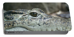 Portable Battery Charger featuring the photograph Crocodile Animal Eye Alligator Reptile Hunter by Paul Fearn