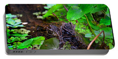 Portable Battery Charger featuring the photograph Crocodilian Hunter by Gary Keesler