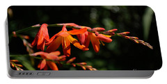 Crocosmia 'dusky Maiden' Flowers Portable Battery Charger